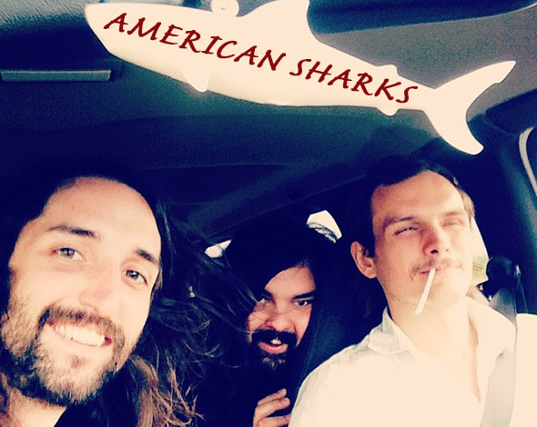 American Sharks - Band Photo