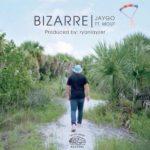Bizarre – JayGo feat. Mouf (prod. by ryanlayzer) #listen #rap